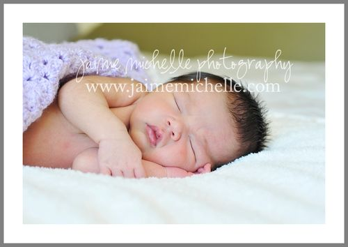 bay area newborn photographer